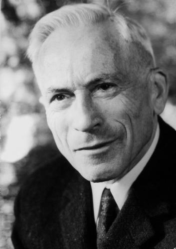 Portrait: Wilhelm Rettich