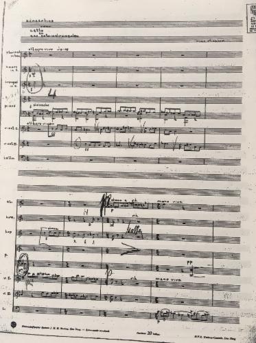 Richter_Concertino_cello_zes_instrumenten.jpg